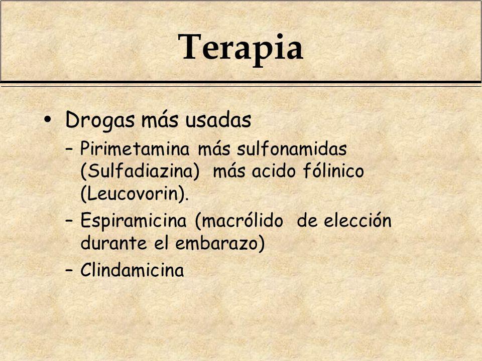 Terapia Drogas más usadas –Pirimetamina más sulfonamidas (Sulfadiazina) más acido fólinico (Leucovorin). –Espiramicina (macrólido de elección durante