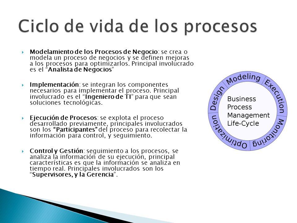 Modelamiento de los Procesos de Negocio: se crea o modela un proceso de negocios y se definen mejoras a los procesos para optimizarlos.