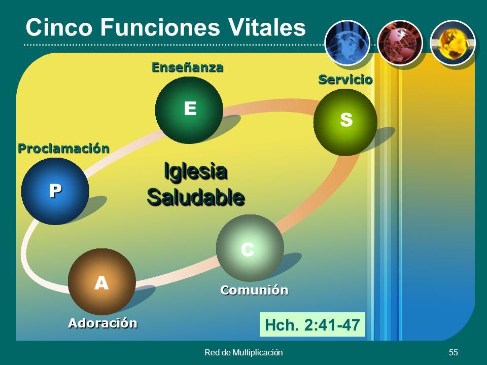 Red de Multiplicación55 Cinco Funciones Vitales Iglesia Saludable ProclamaciónP Enseñanza E Servicio S Comunión C Adoración A Hch. 2:41-47