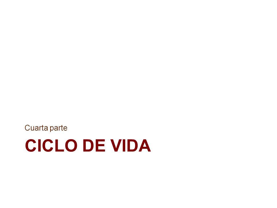 CICLO DE VIDA Cuarta parte