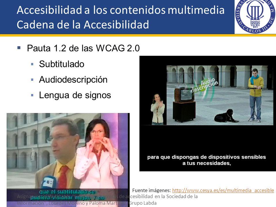 Pauta 1.2 de las WCAG 2.0 Subtitulado Audiodescripción Lengua de signos Fuente imágenes: http://www.cesya.es/es/multimedia_accesiblehttp://www.cesya.e