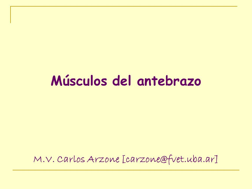 Músculos del antebrazo M.V. Carlos Arzone [carzone@fvet.uba.ar]