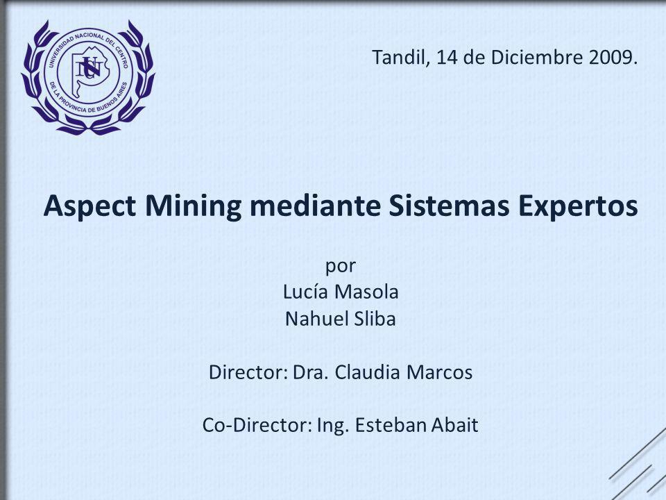 Aspect Mining mediante Sistemas Expertos por Lucía Masola Nahuel Sliba Director: Dra. Claudia Marcos Co-Director: Ing. Esteban Abait Tandil, 14 de Dic