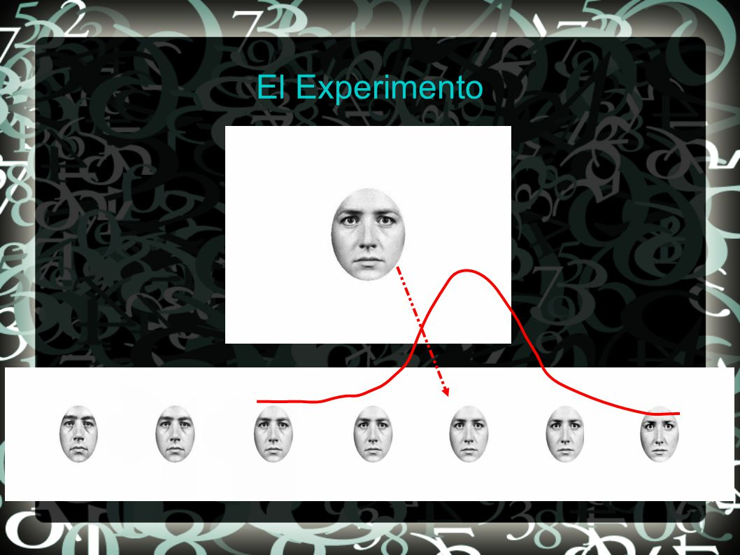 24/05/2011Juan E., M.Laura G.S. y Alejo S.7 El Experimento