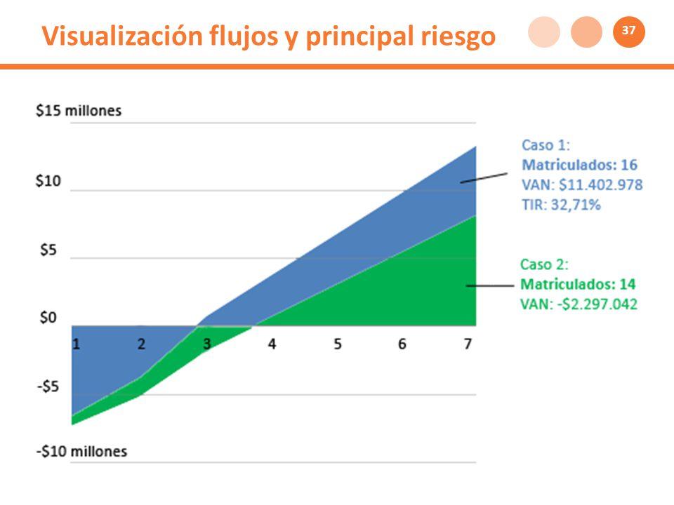 Visualización flujos y principal riesgo 37