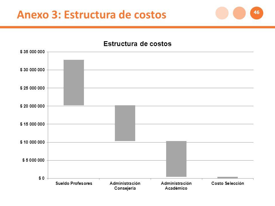 Anexo 3: Estructura de costos 46