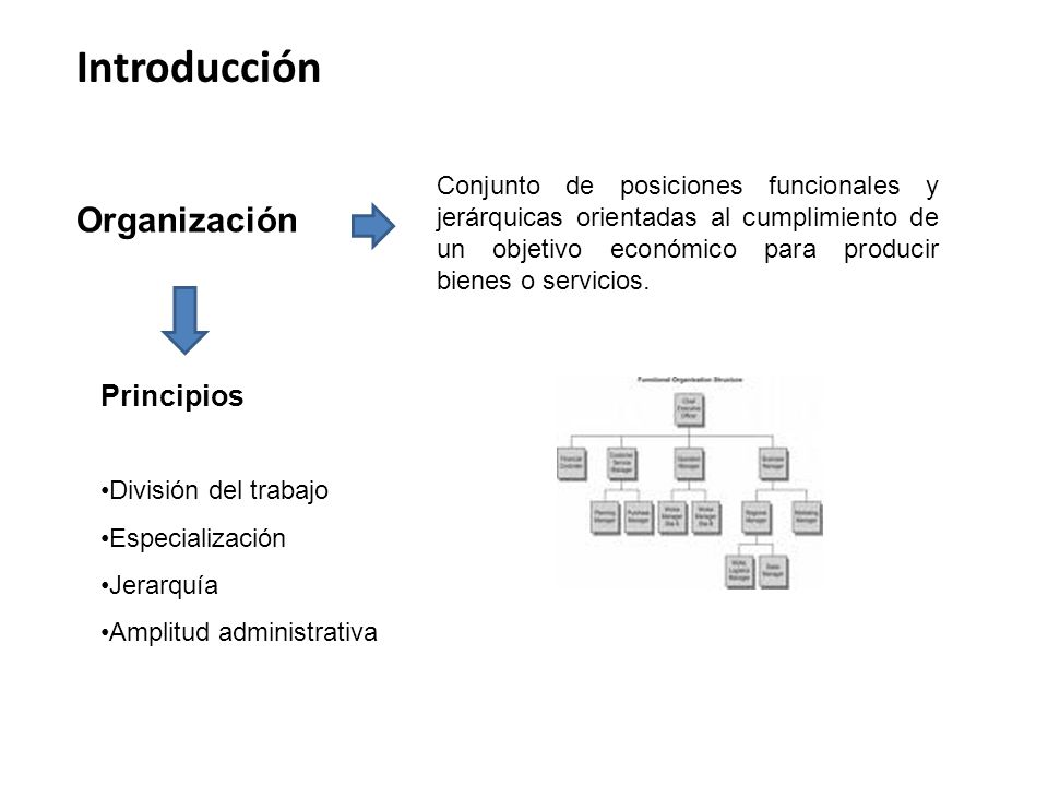 Organización Introducción Conjunto de posiciones funcionales y jerárquicas orientadas al cumplimiento de un objetivo económico para producir bienes o