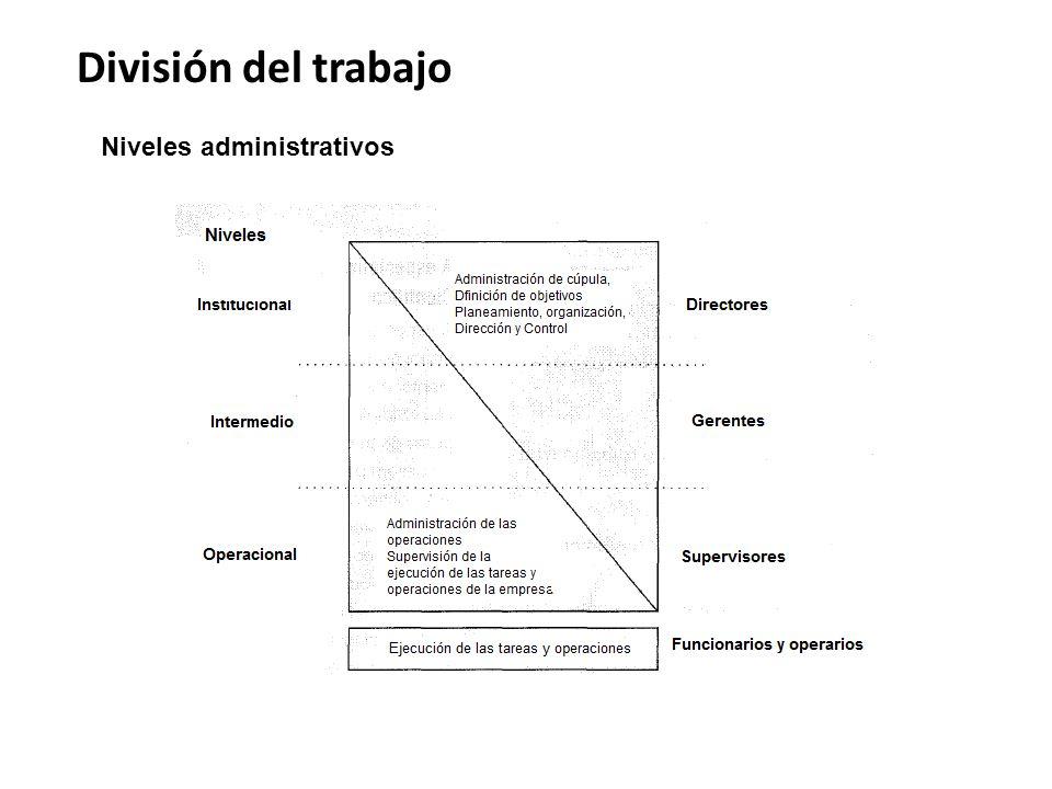 División del trabajo Niveles administrativos