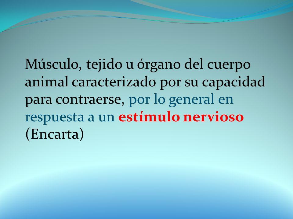 Músculo, tejido u órgano del cuerpo animal caracterizado por su capacidad para contraerse, por lo general en respuesta a un estímulo nervioso (Encarta