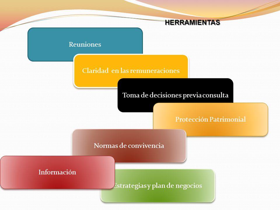 Reuniones Claridad en las remuneraciones Toma de decisiones previa consulta Protección Patrimonial Normas de convivencia Estrategias y plan de negocio