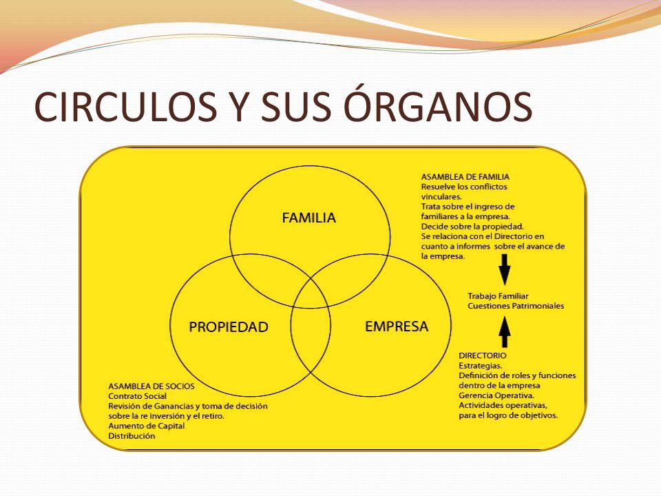 CIRCULOS Y SUS ÓRGANOS