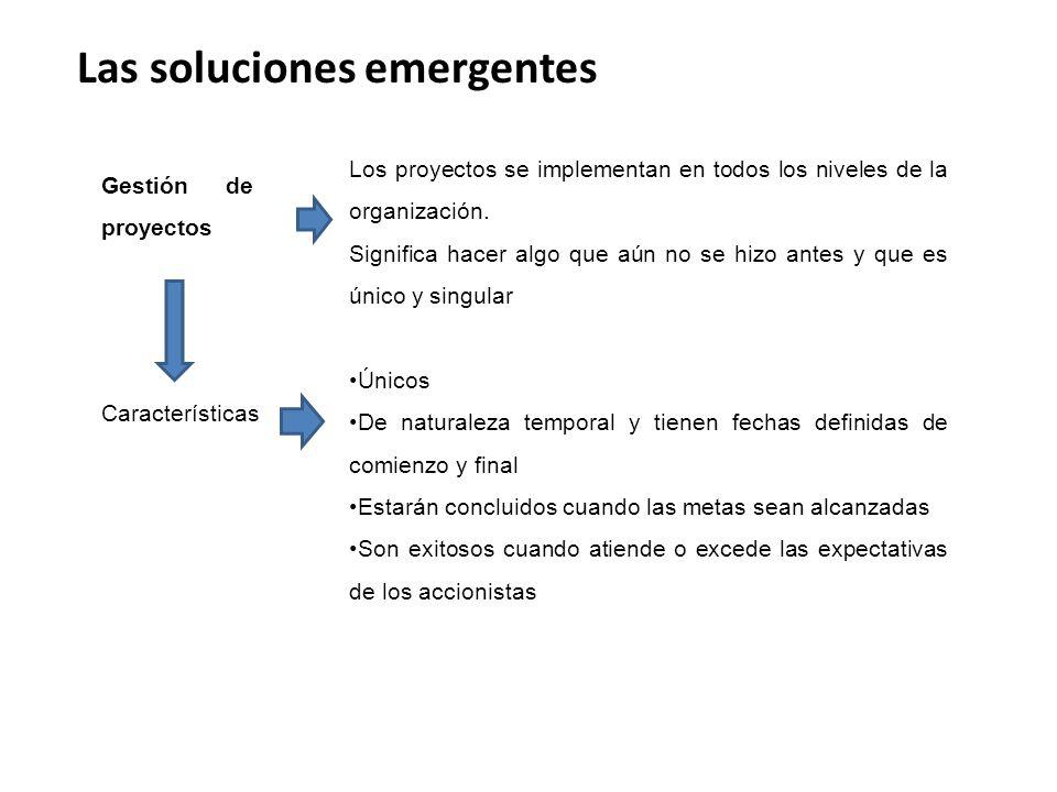 Las soluciones emergentes Gestión de proyectos Los proyectos se implementan en todos los niveles de la organización.