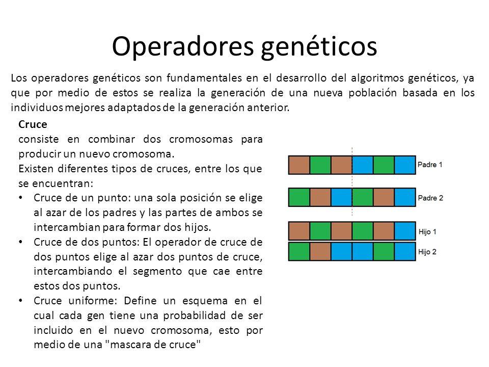 Operadores genéticos Los operadores genéticos son fundamentales en el desarrollo del algoritmos genéticos, ya que por medio de estos se realiza la gen