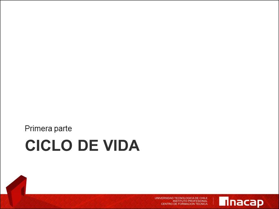 CICLO DE VIDA Primera parte