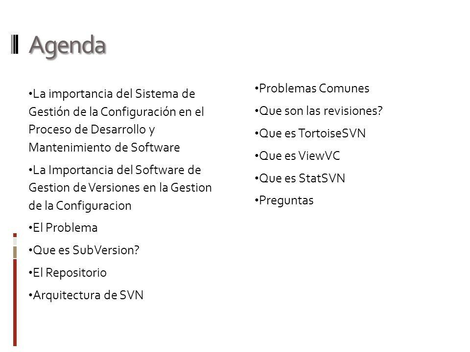 Agenda La importancia del Sistema de Gestión de la Configuración en el Proceso de Desarrollo y Mantenimiento de Software La Importancia del Software d