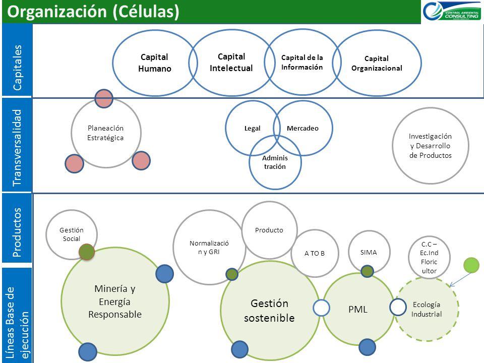 SIMA Gestión Social Organización (Células) Normalizació n y GRI Planeación Estratégica Ecología Industrial Gestión sostenible Minería y Energía Respon