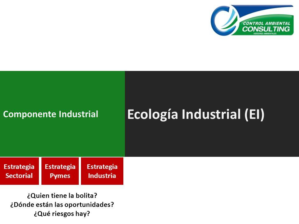 Ecología Industrial (EI) Componente Industrial Estrategia Sectorial Estrategia Pymes Estrategia Industria ¿Quien tiene la bolita? ¿Dónde están las opo