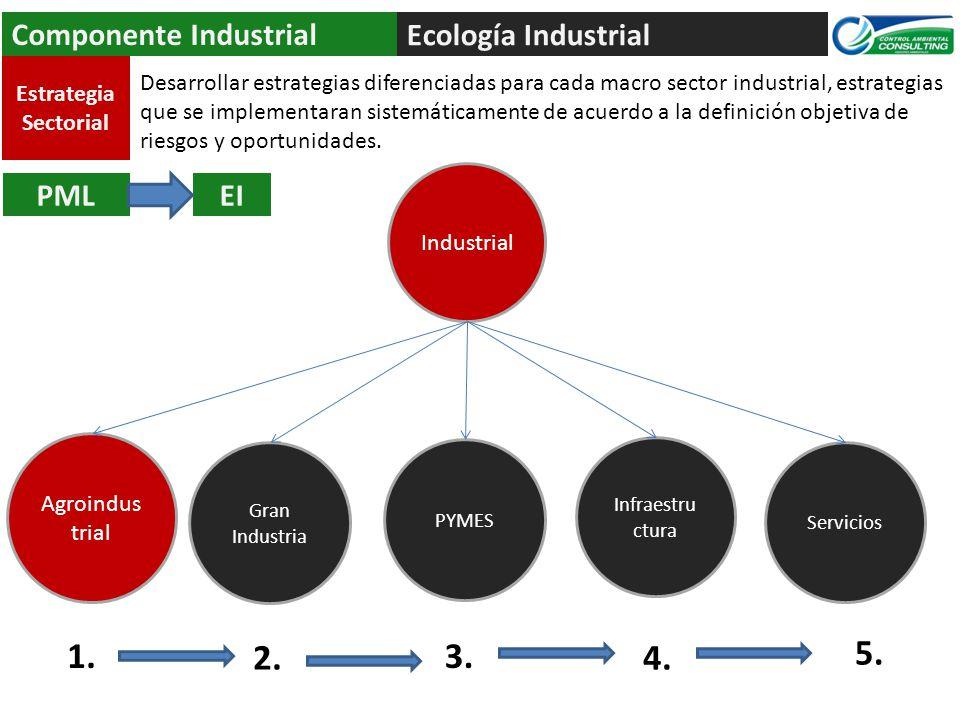 Ecología Industrial Componente Industrial PMLEI Industrial PYMES Servicios Gran Industria Infraestru ctura Estrategia Sectorial Agroindus trial 1. 2.