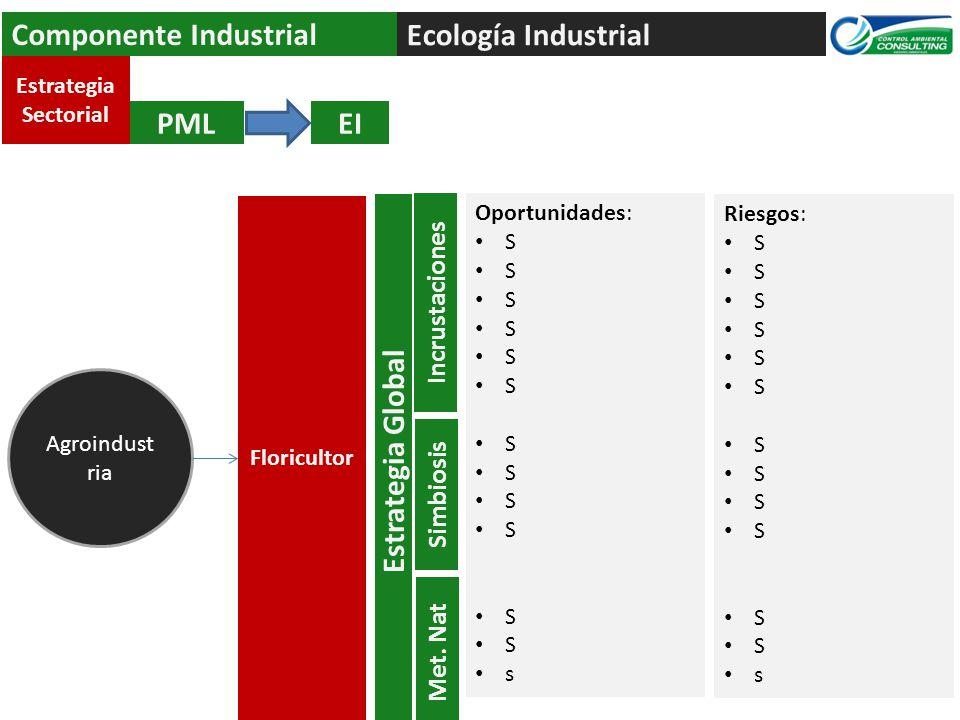 Ecología Industrial Componente Industrial PMLEI Agroindust ria Estrategia Sectorial Floricultor Oportunidades: S s Estrategia Global Incrustaciones Simbiosis Met.
