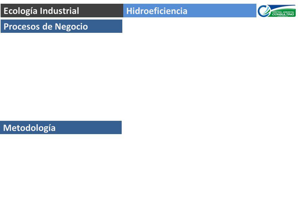 Hidroeficiencia Ecología Industrial Procesos de Negocio Metodología