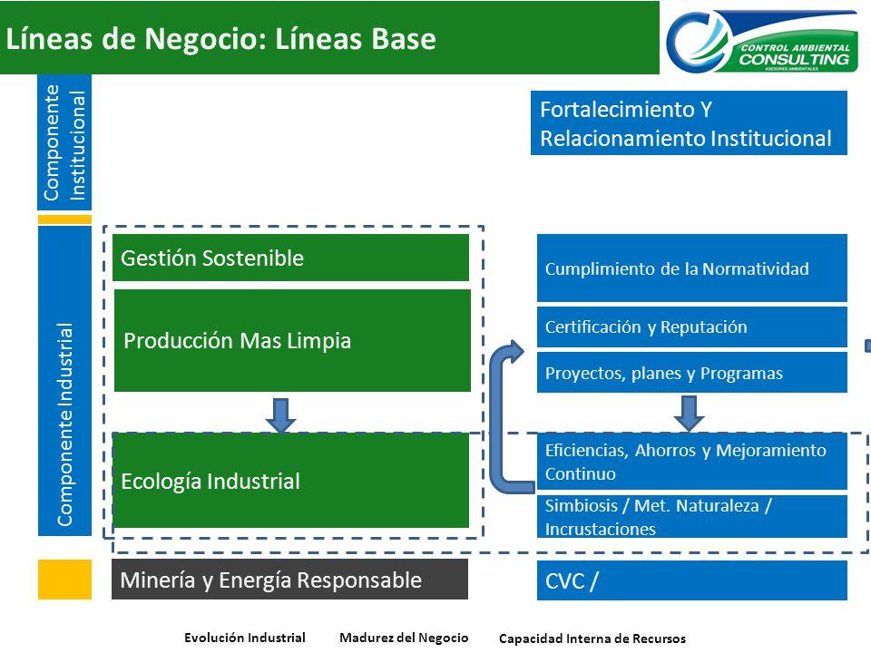 Líneas de Negocio: Líneas Base Ecología Industrial Producción Mas Limpia Gestión Sostenible Componente Industrial Minería y Energía Responsable Evoluc