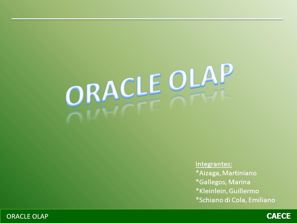 ORACLE OLAP CAECE Componentes de Oracle OLAP Componentes Oracle OLAP API AW Funcionalidad de OLAP API Los componentes de Oracle OLAP se subdividen en dos grandes áreas.