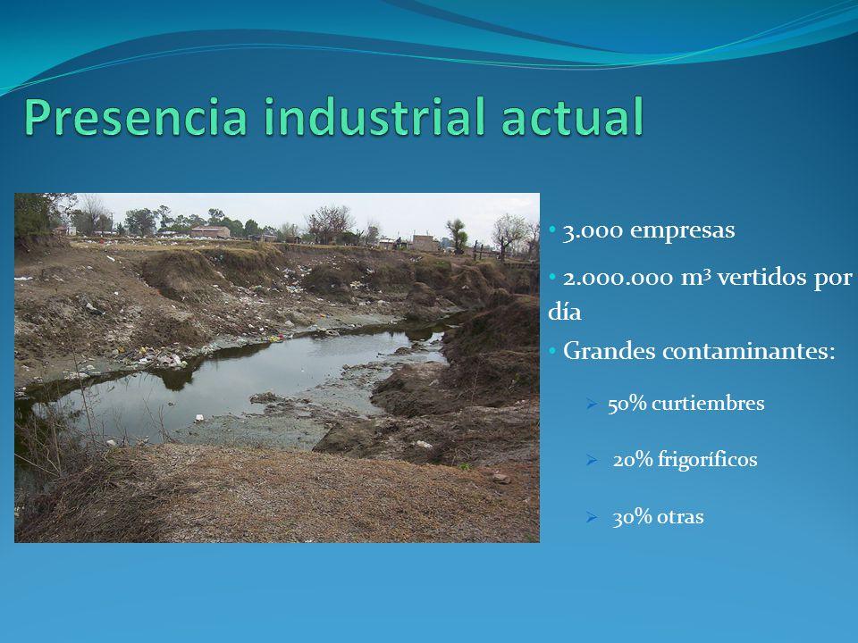 3.000 empresas 2.000.000 m 3 vertidos por día Grandes contaminantes: 50% curtiembres 20% frigoríficos 30% otras