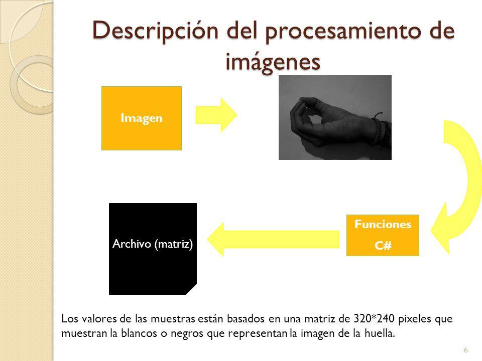 Descripción del procesamiento de imágenes 6 Imagen Archivo (matriz) Funciones C# Los valores de las muestras están basados en una matriz de 320*240 pi