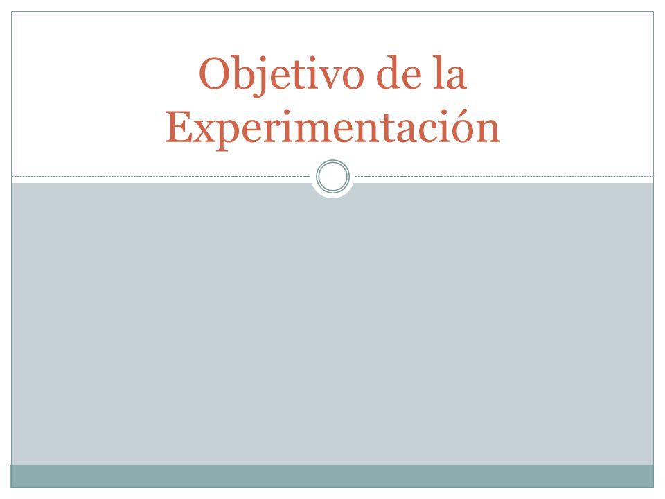 Objetivo de la Experimentación