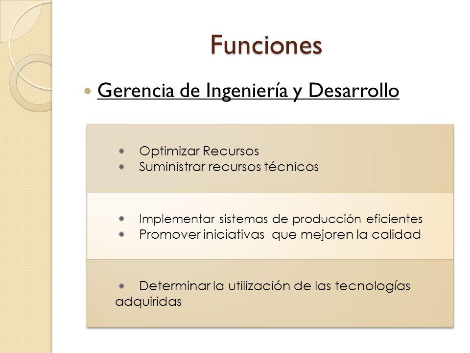Funciones Gerencia de Ingeniería y Desarrollo