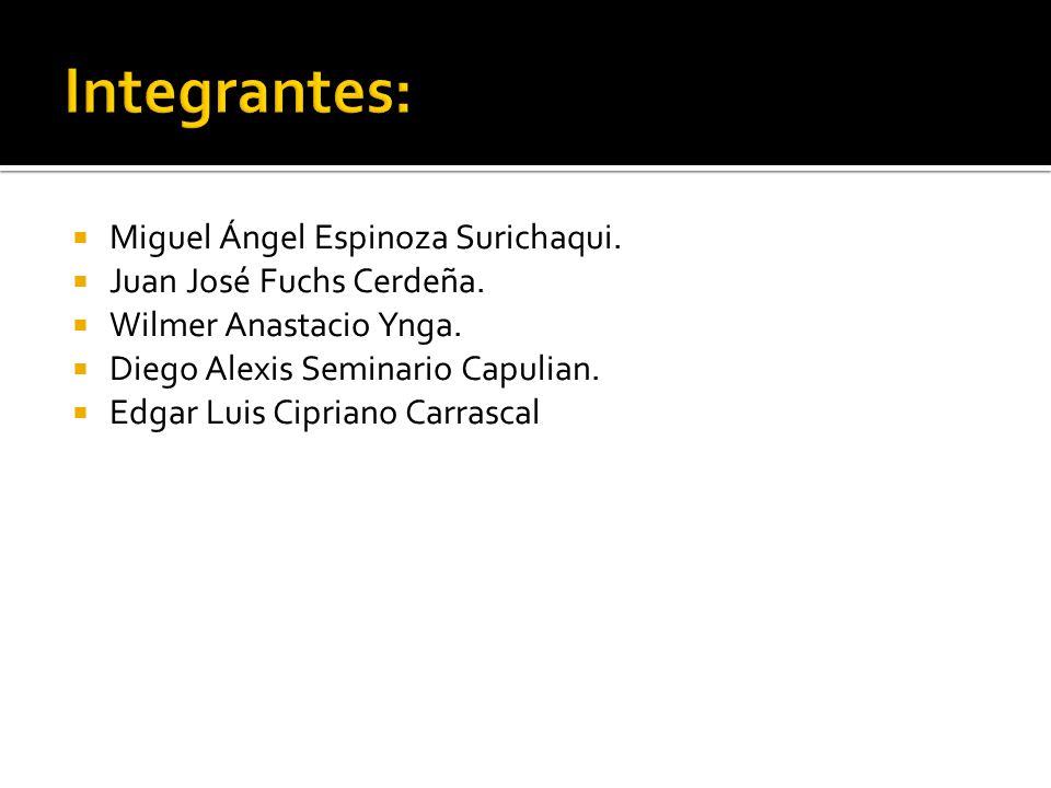 Miguel Ángel Espinoza Surichaqui. Juan José Fuchs Cerdeña. Wilmer Anastacio Ynga. Diego Alexis Seminario Capulian. Edgar Luis Cipriano Carrascal