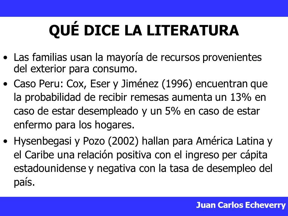 Juan Carlos Echeverry QUÉ DICE LA LITERATURA Las familias usan la mayoría de recursos provenientes del exterior para consumo.