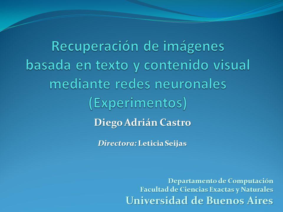 Departamento de Computación Facultad de Ciencias Exactas y Naturales Universidad de Buenos Aires Diego Adrián Castro Directora: Leticia Seijas
