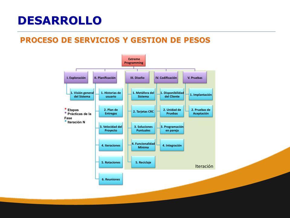 DESARROLLO PROCESO DE SERVICIOS Y GESTION DE PESOS