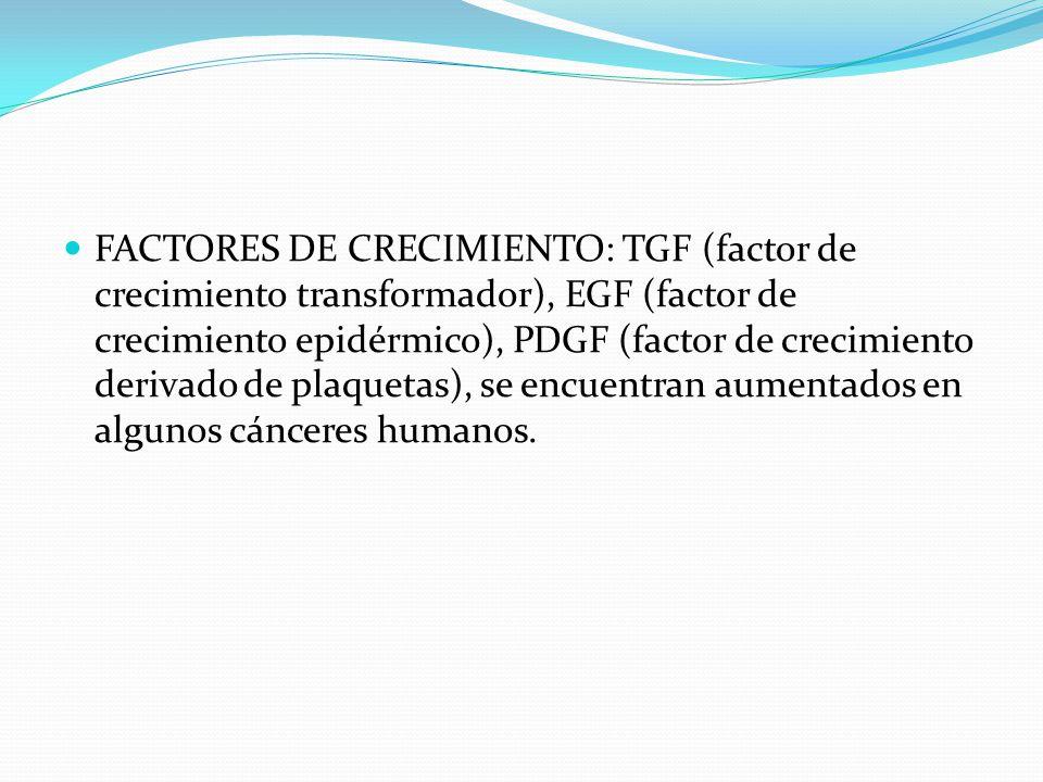 FACTORES DE CRECIMIENTO: TGF (factor de crecimiento transformador), EGF (factor de crecimiento epidérmico), PDGF (factor de crecimiento derivado de pl