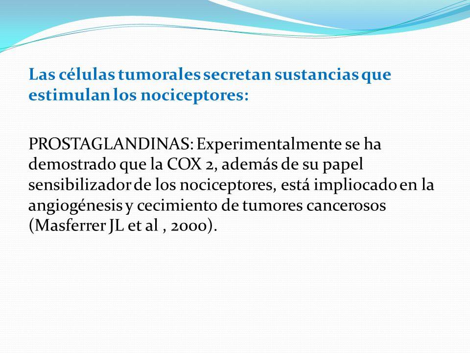 Las células tumorales secretan sustancias que estimulan los nociceptores: PROSTAGLANDINAS: Experimentalmente se ha demostrado que la COX 2, además de