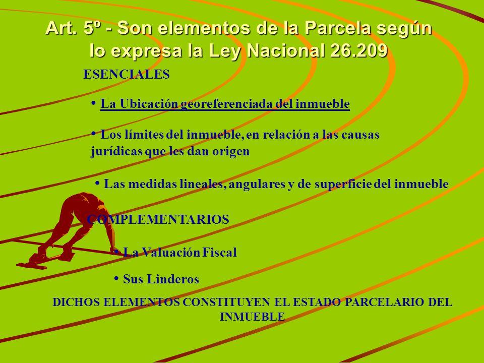 Art. 5º - Son elementos de la Parcela según lo expresa la Ley Nacional 26.209 La Ubicación georeferenciada del inmueble Los límites del inmueble, en r