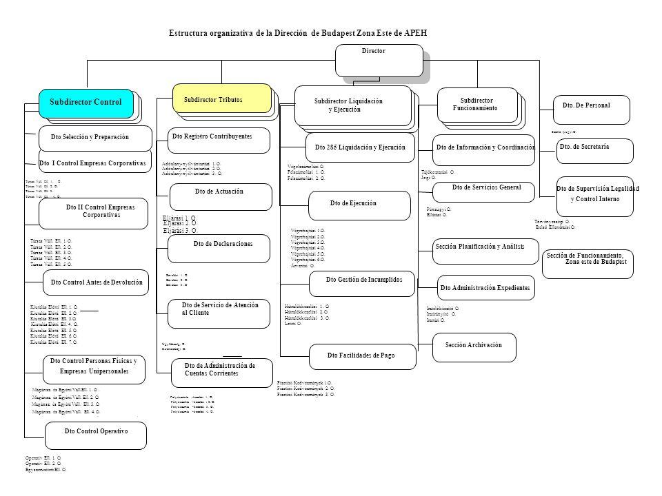 Director Subdirector Control Subdirector Tributos Subdirector Liquidación y Ejecución Dto de Información y Coordinación Dto.