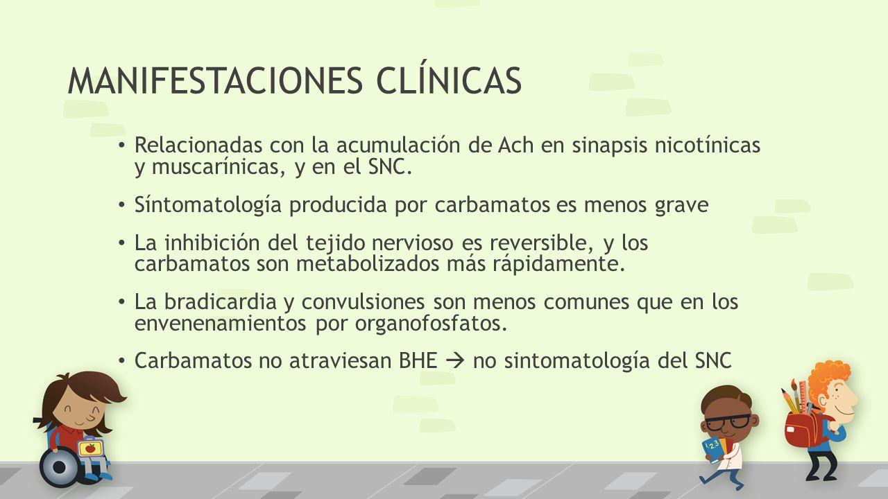 MANIFESTACIONES CLÍNICAS Relacionadas con la acumulación de Ach en sinapsis nicotínicas y muscarínicas, y en el SNC. Síntomatología producida por carb
