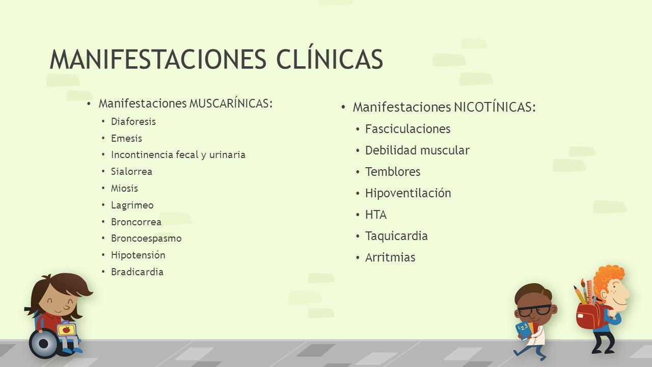 MANIFESTACIONES CLÍNICAS Manifestaciones MUSCARÍNICAS: Diaforesis Emesis Incontinencia fecal y urinaria Sialorrea Miosis Lagrimeo Broncorrea Broncoesp