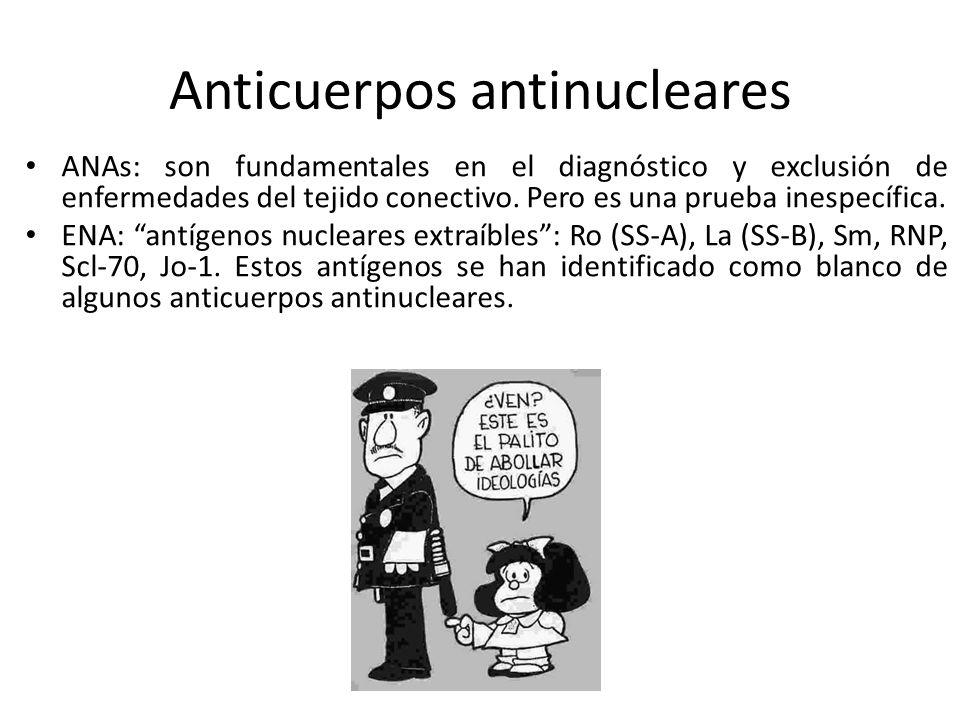 Anticuerpos antinucleares ANAs: son fundamentales en el diagnóstico y exclusión de enfermedades del tejido conectivo. Pero es una prueba inespecífica.