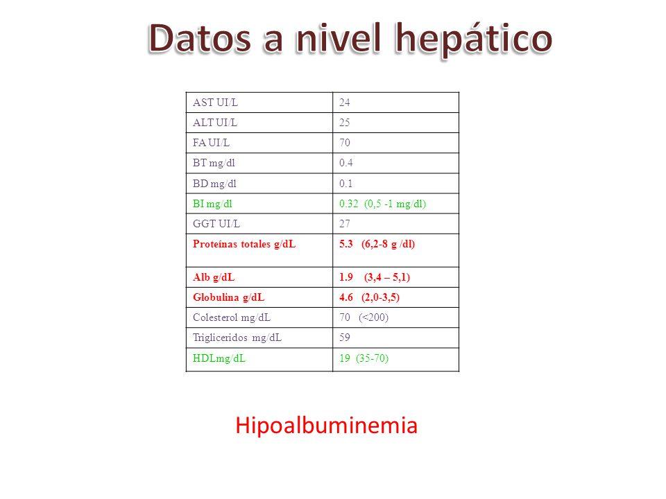 AST UI/L24 ALT UI/L25 FA UI/L70 BT mg/dl0.4 BD mg/dl0.1 BI mg/dl0.32 (0,5 -1 mg/dl) GGT UI/L27 Proteínas totales g/dL5.3 (6,2-8 g /dl) Alb g/dL1.9 (3,