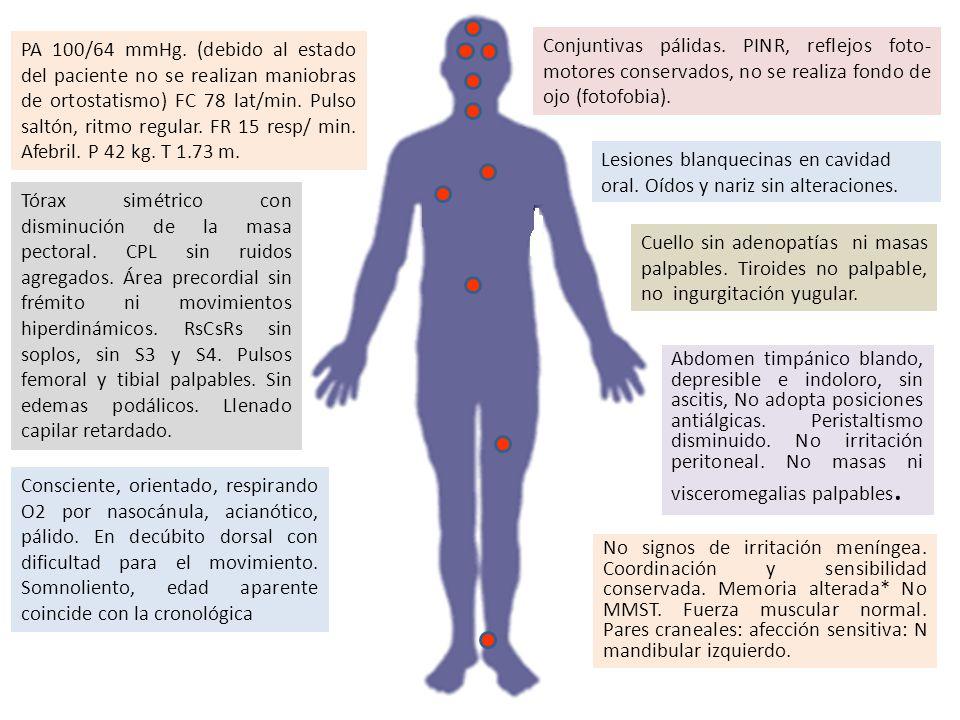 PA 100/64 mmHg. (debido al estado del paciente no se realizan maniobras de ortostatismo) FC 78 lat/min. Pulso saltón, ritmo regular. FR 15 resp/ min.