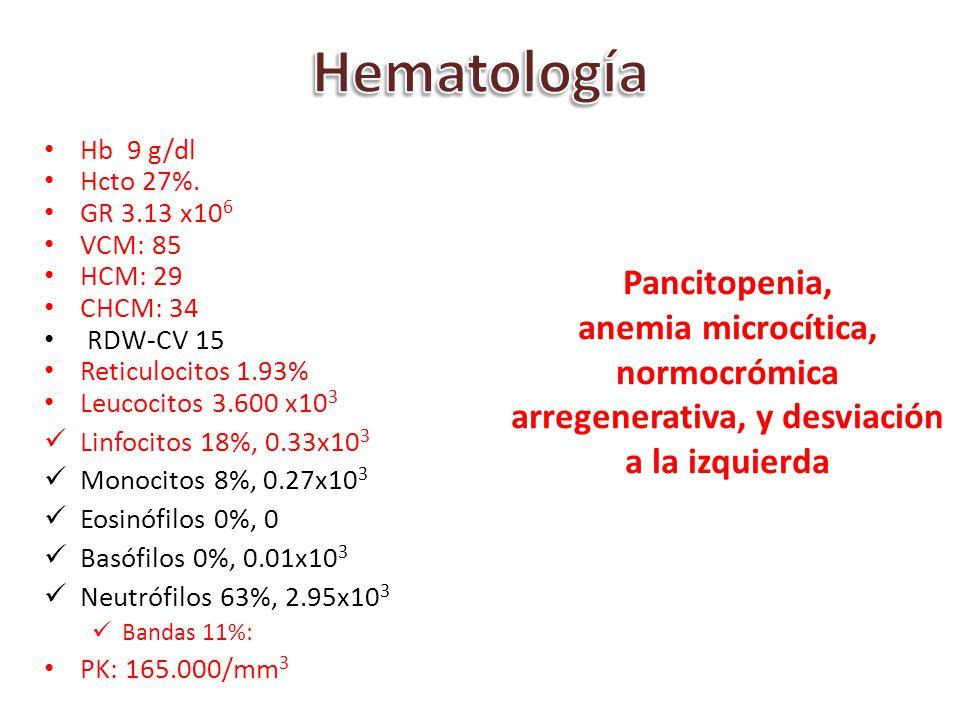 Hb 9 g/dl Hcto 27%. GR 3.13 x10 6 VCM: 85 HCM: 29 CHCM: 34 RDW-CV 15 Reticulocitos1.93% Leucocitos 3.600 x10 3 Linfocitos 18%, 0.33x10 3 Monocitos 8%,
