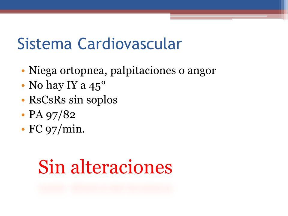 Sistema Cardiovascular Niega ortopnea, palpitaciones o angor No hay IY a 45° RsCsRs sin soplos PA 97/82 FC 97/min.