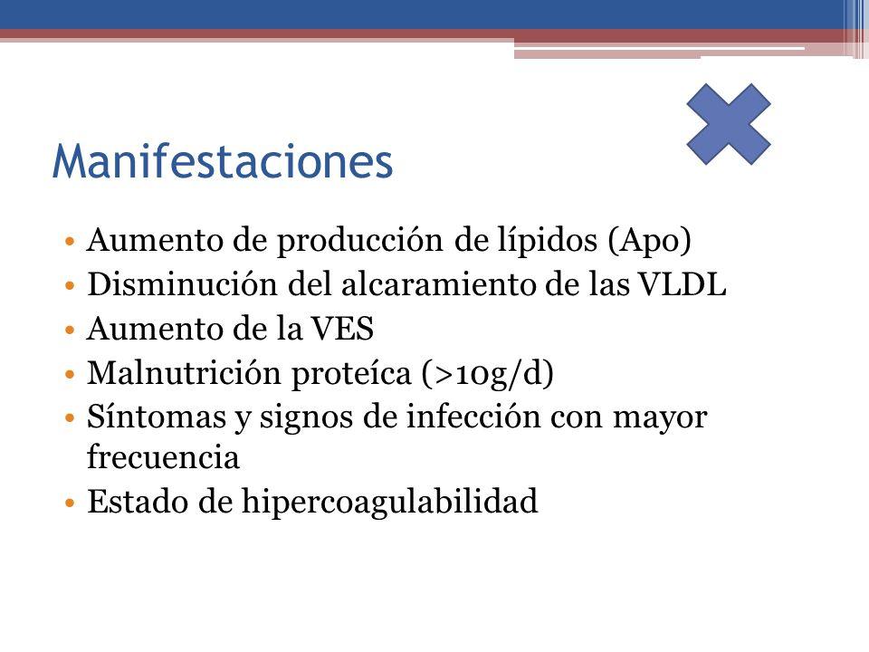 Manifestaciones Aumento de producción de lípidos (Apo) Disminución del alcaramiento de las VLDL Aumento de la VES Malnutrición proteíca (>10g/d) Sínto