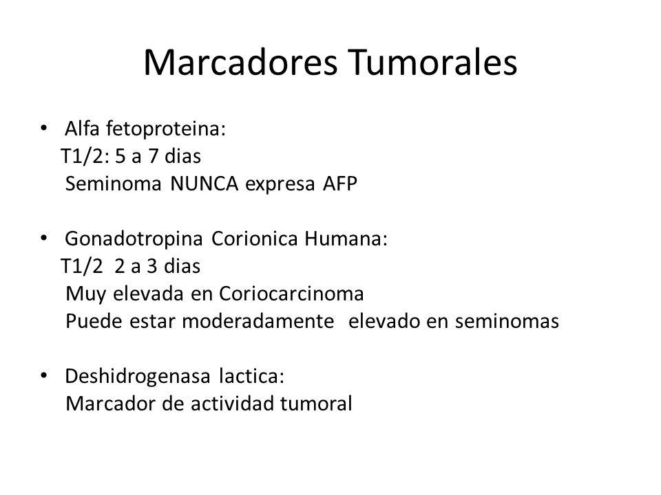 Marcadores Tumorales Alfa fetoproteina: T1/2: 5 a 7 dias Seminoma NUNCA expresa AFP Gonadotropina Corionica Humana: T1/2 2 a 3 dias Muy elevada en Coriocarcinoma Puede estar moderadamente elevado en seminomas Deshidrogenasa lactica: Marcador de actividad tumoral