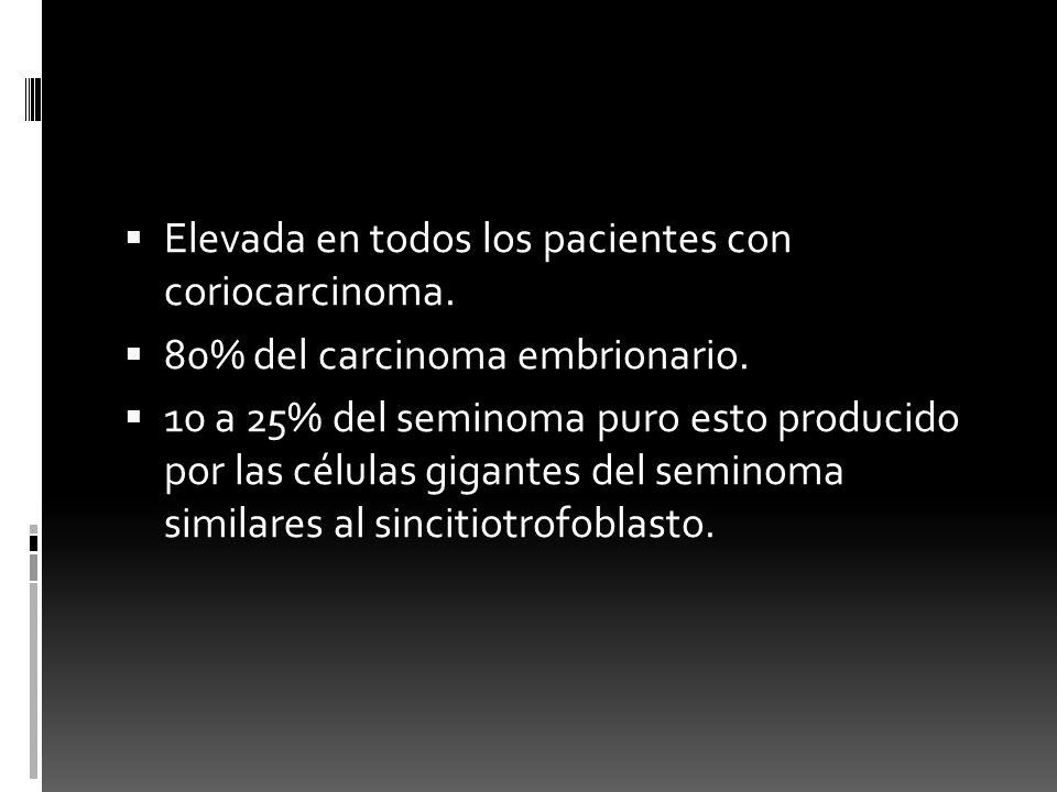 Elevada en todos los pacientes con coriocarcinoma. 80% del carcinoma embrionario. 10 a 25% del seminoma puro esto producido por las células gigantes d