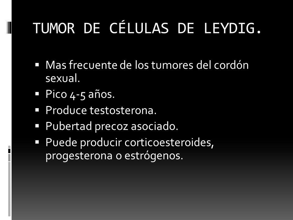 TUMOR DE CÉLULAS DE LEYDIG. Mas frecuente de los tumores del cordón sexual. Pico 4-5 años. Produce testosterona. Pubertad precoz asociado. Puede produ