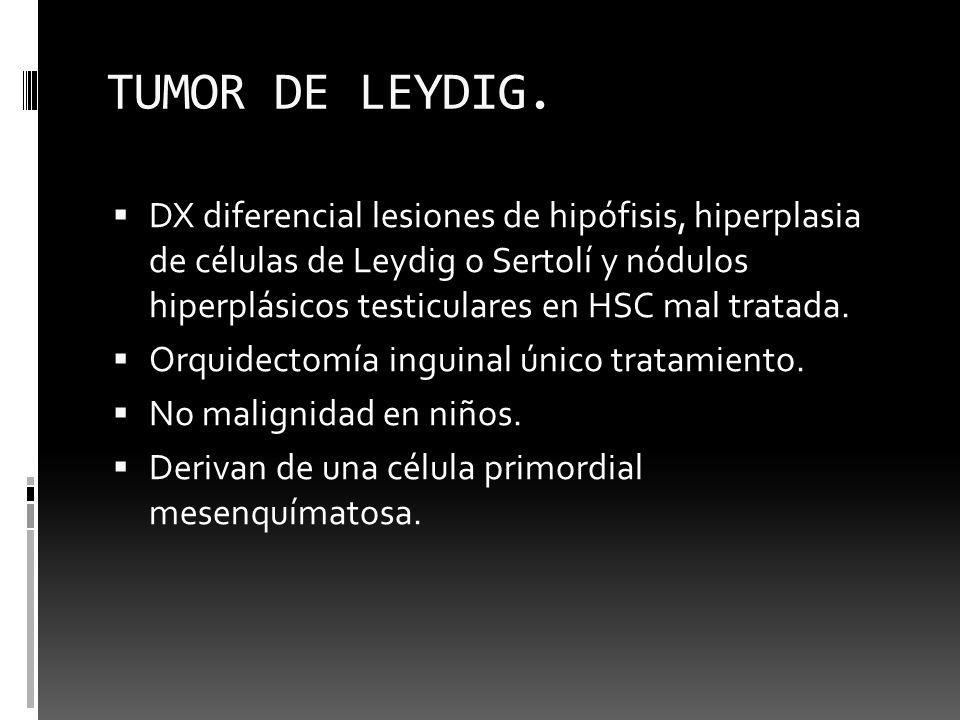 TUMOR DE LEYDIG. DX diferencial lesiones de hipófisis, hiperplasia de células de Leydig o Sertolí y nódulos hiperplásicos testiculares en HSC mal trat